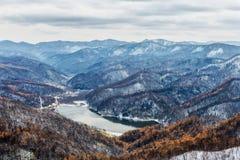 Śnieżny zimy natury jeziora wody liścia strumień zdjęcia stock