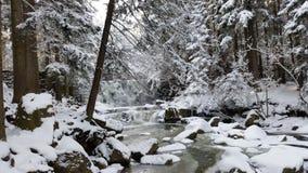 Śnieżnych Å› nieg lasów gà ³ ry gór Lasowy rzeka Obraz Royalty Free