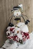 Śnieżnych pokryw jedwabiu kwiaty i strach na wróble dekoracje zdjęcie stock