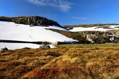 Śnieżnych poly góry Łąkowy krajobraz zdjęcie stock