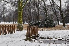 Śnieżyści drzewa, krzaki i most nad małym strumieniem w miasto parku w ranku, obraz stock