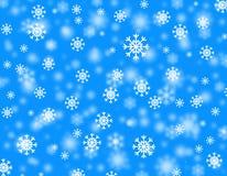 śnieżyca Zdjęcie Royalty Free