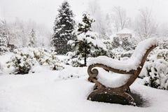 śnieżyca zdjęcie stock