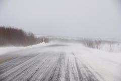 śnieżyca Zdjęcia Stock