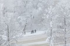 Śnieżyca w mieście Ludzie stoją przy autobusową przerwą w miecielicie Obrazy Stock