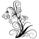 Śnieżyczki Doodle wektorowego stylu Kwieciste śnieżyczki Fotografia Royalty Free