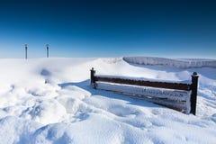 Śnieżysta ławka w parku Zdjęcie Royalty Free