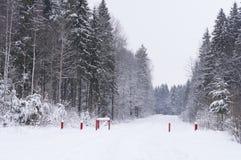 Śnieżysta droga przez zim drewien Zdjęcia Royalty Free