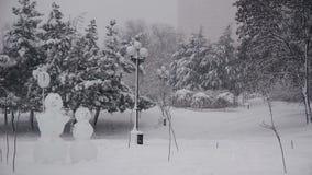 Śnieżysta sosna rozgałęzia się w zimy ciężkim opad śniegu zbiory wideo