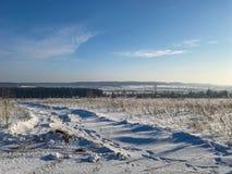 Śnieżysta trawa na polu w pogodnym popołudniu w mrozie Zdjęcia Stock
