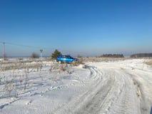 Śnieżysta trawa na polu w pogodnym popołudniu w mrozie Fotografia Stock