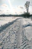 Śnieżysta wiejska ulica Fotografia Royalty Free
