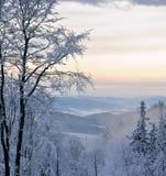 Śnieżyste góry Obraz Royalty Free