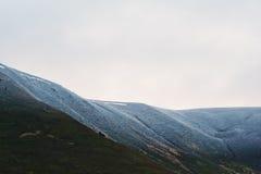 Śnieżysty góra wierzchołek z drzewami przy Karpackimi górami dalej zdjęcia royalty free