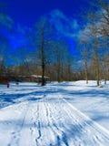 Śniegów ślada Zdjęcia Stock