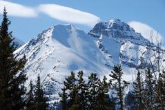 śnieg. zdjęcie stock