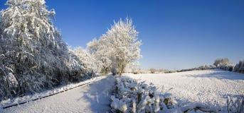 śnieg Obrazy Stock
