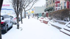 śnieg zdjęcie wideo