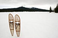 śnieg butów Obraz Stock