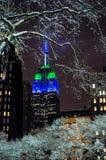 Śnieg Lekki NYC obrazy stock