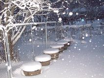 Śnieg na drzewie Zdjęcie Stock