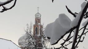 Śnieg Na gałąź Styczeń 33c krajobrazu Rosji zima ural temperatury Śnieg zakrywać zim gałąź zdjęcia stock