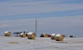 Śnieg na Havested siana polu Ostatnio fotografia stock