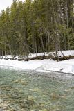 Śnieg na riverbank zdjęcie royalty free