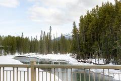 Śnieg na riverbank obraz royalty free