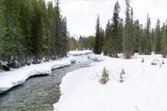 Śnieg na riverbank obrazy stock