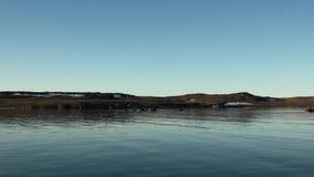 Śnieg na wybrzeżu i nawierzchniowej czystej jasnej wodzie Arktyczny ocean na Nowej ziemi zdjęcie wideo