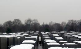 Śnieg nad pomnikiem obrazy royalty free