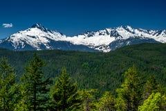 Śnieg nakrywać Skaliste góry i luksusowy las obraz royalty free