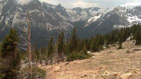 Śnieg Nakrywająca góra w Kolorado Zdjęcie Stock