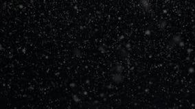 Śnieg, płatki śniegu, odpłacał się animację snowing, Spada płatki śniegu, śnieżny transperent tło