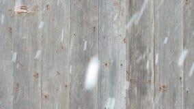 Śnieg Spada przed Cedrowym drzwi zdjęcie wideo