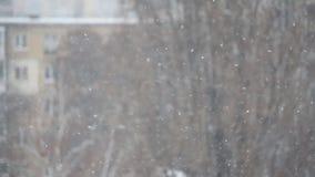 Śnieg spada w mieście na zamazanym tle zbiory
