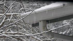 Śnieg spada w przetartym domowym rynnowym pobliskim drzewie zbiory wideo