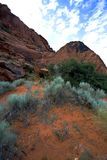 śnieg Utah canyon Zdjęcie Stock