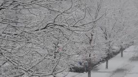 Śnieg w mieście zbiory