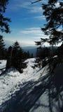 Śnieg z słońcem Obraz Royalty Free