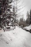 Śnieg zakrywał ławkę w Vail, Kolorado podczas zimy zdjęcie royalty free