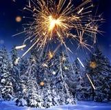 Śnieg zakrywał świerkowych drzewa i sparkler - boże narodzenia Fotografia Royalty Free