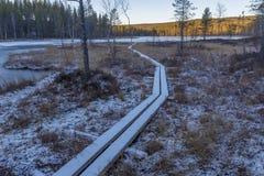 Śnieg zakrywał deska ślad nad bagnisko prowadzi jezioro z ic fotografia stock