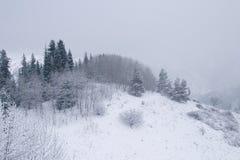 Śnieg zakrywał halnego Ile Alatau na chmurnym dniu Zdjęcia Royalty Free