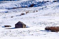 Śnieg zakrywał Kolorado zbocze z kabiną w zimie fotografia royalty free