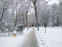Śnieg zakrywał miasto parka na bezwietrznym dniu fotografia stock