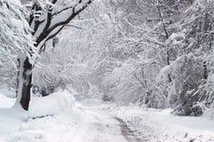 Zima ślad Fotografia Stock