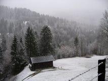 Śnieg zakrywał wiecznozielonego drzewnego las z kabiną w rolnym polu w przedpolu Obrazy Royalty Free