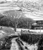 Śnieg zakrywał Yorkshire krajobraz z kraju pasa ruchu bieg Obraz Royalty Free